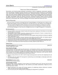 1000 images about best consultant resume templates samples on click here junior travel consultant resume
