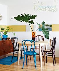 room plants x: dine x design plants in the kitchen and