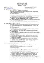 profile section of resume examples profile personal b f e cf nice cover letter profile section of resume examples profile personal b f e cf nice examplesit resume profile examples