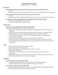 d brad mitchell gis printable resume and references available upon request