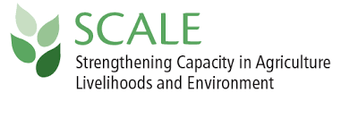 <b>SCALE</b> | Food Security and Nutrition Network