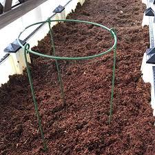 <b>Plant</b> Support Rings, <b>Plant Grow</b> Cages, 2 Pack Vine <b>Climbing</b> ...