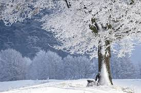 10,000+ Free <b>Winter Landscape</b> & Winter Images - Pixabay