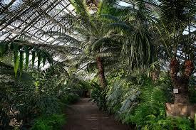 Saint Petersburg <b>Botanical</b> Garden