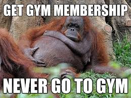 Lazy Orangutan memes | quickmeme via Relatably.com