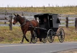 take the back roads to amish country wisconsin and beyond vernon