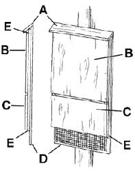 DEEP  Bat Fact SheetSmall Bat House Diagram
