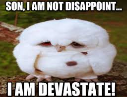 Memes Vault Almost Friday Animal Memes via Relatably.com
