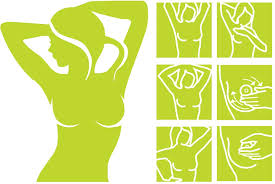 <b>Breast</b> Health: <b>Breast</b> Self-Exam and Cancer Risks | Center for ...