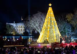 Image result for national christmas tree images