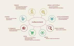 murecommend meta software mu sigma a meta software that integrates cross industry experience in the recommendation personalization and crm landscape