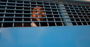 Six sentenced to death in Bangladesh for killing LGBTQ activists ...