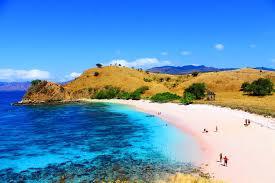 Hasil gambar untuk pink beach