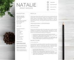 breakupus wonderful s resume buzz words teacher breakupus fetching ideas about resume design resume cv template astounding professional resume template