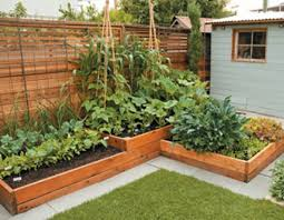 Small Picture Garden Bed Ideas 20 Raised Bed Garden Designs And Beautiful