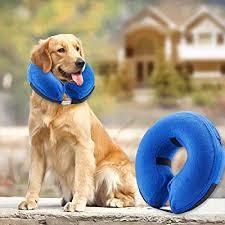 Anti <b>Flea</b> Tick Collar Insect for <b>Small Pet Dog</b> Cat Protection Collar pi4