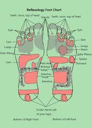 reflexology foot chart   new health guideimage