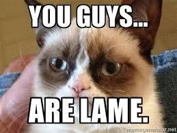 You guys... are lame. - Angry Cat Meme | Meme Generator via Relatably.com