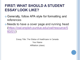 what makes a successful undergraduate student essay presented by  first what should a student essay look like generally follow apa style for