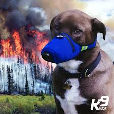 K9 <b>Mask</b>® - Air Filter <b>Face Mask</b> for Dogs - USA Made – K9 <b>Mask</b> ...