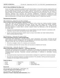 support analyst resume sample cipanewsletter cover letter technology lead resume digital technology lead resume