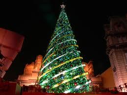 「クリスマスツリー」の画像検索結果