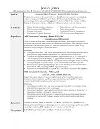 adjuster cover letter insurance claims adjuster resume sample resume examples