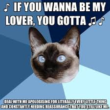 IF YOU WANNA BE MY LOVER, YOU GOTTA ♫ ♪ deal with me apologising ... via Relatably.com