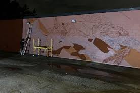 Fundraiser for Greg Gordon by Brynn Wiegmann : <b>Dog Patch</b> Mural