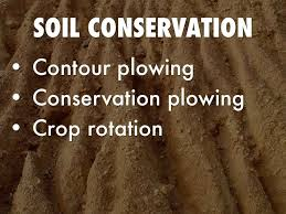 soil conservation measures in essay soil conservation measures in essay