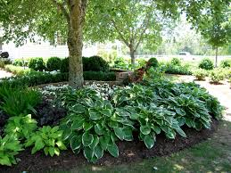 Small Picture Shade Garden Design Garden Design Ideas