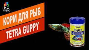 Обзор <b>корм</b> для рыб <b>Tetra Guppy</b>