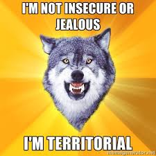 I'm not insecure or jealous I'm territorial - Courage Wolf | Meme ... via Relatably.com