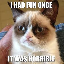 "Funny ""Grumpy Cat"" Meme Selection (14 pics) - Izismile.com via Relatably.com"