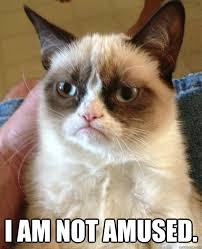 I am not amused. - Grumpy Cat - quickmeme via Relatably.com