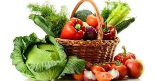 ser vegetariano es imposible,según la ciencia