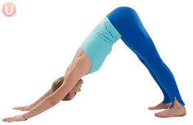 Image result for yoga downdog pose