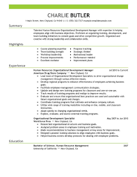 organizational development resume example my perfect resume organizational development resume example my perfect resume