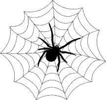 Afbeeldingsresultaat voor herfst spinnenweb