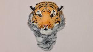 <b>Рюкзак</b> в виде головы тигра (Luxury Tiger Head Bag) - YouTube