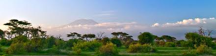 Kenya Uçak Bileti Al