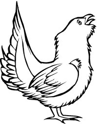 Small Picture Grouse Bird coloring page Free Printable Coloring Pages