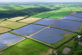 Image result for solar fields pictures