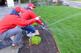 Image result for landscape irrigation system