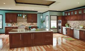 Dark Brown Kitchen Cabinets Lovable Brown Kitchen Cabinets About Interior Decor Ideas With