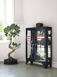 is that a tire rim for the bonsai love it add bonsai office interior