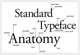 design practice  typography task  helvetica vs optimahere is a diagram which explains the correct terminology for the layout and design of a typeface