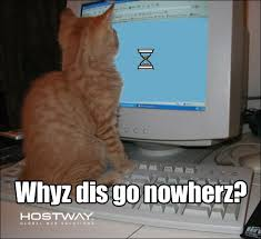 Slow Load Meme | Hostway via Relatably.com