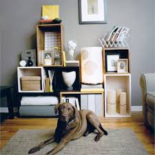 storage solutions living room:  clutter control cubes dog