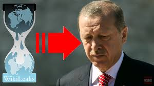wikileaks cables about turkey president erdogan and his son